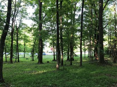 Residential Lots & Land For Sale: 302 E Shore Drive