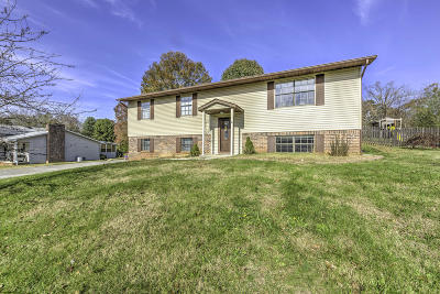 Maryville Single Family Home For Sale: 615 Periwinkle Lane