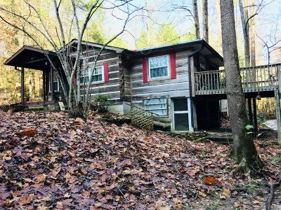 Sevier County Single Family Home For Sale: 3125 Cool Creek Rd