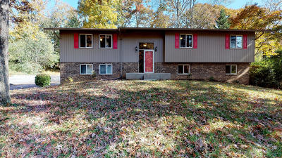 Knox County Single Family Home For Sale: 1124 Delray Rd