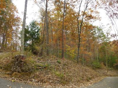 Sevierville Residential Lots & Land For Sale: Lot 522 Sky View Dr.