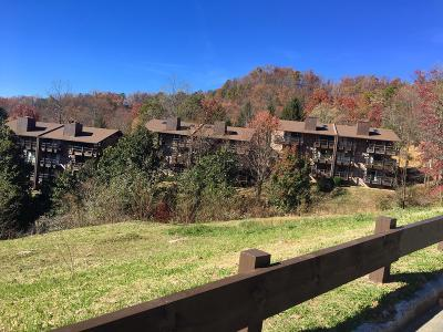 Sevierville Condo/Townhouse For Sale: 1081 Cove Rd #Unit 913