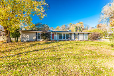 Knoxville Single Family Home For Sale: 3914 Terrace View Drive