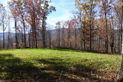 Pioneer Residential Lots & Land For Sale: Persimmon Lane