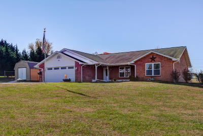 Sevierville Single Family Home For Sale: 1413 Broadview Circle
