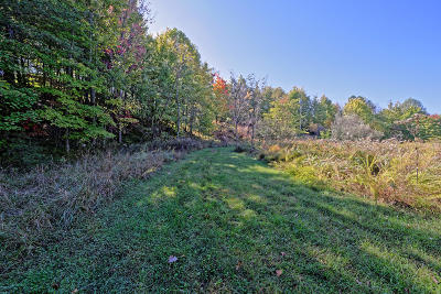 Campbell County Residential Lots & Land For Sale: Racoon Lane