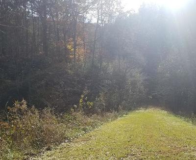 Sevierville Residential Lots & Land For Sale: Lot #4 Coy Rhea Way