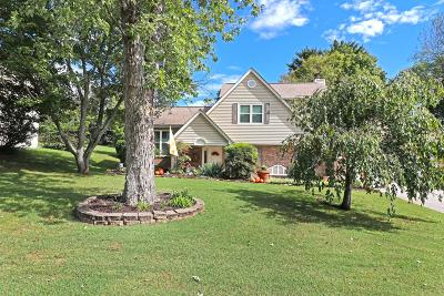 Knoxville Single Family Home For Sale: 1906 Bishops Bridge Rd #5