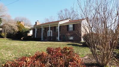 Knoxville Single Family Home For Sale: 940 Roderick Rd