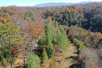 Sevierville Residential Lots & Land For Sale: Lots 4, 5, 6, 7, & 8 Beech Way