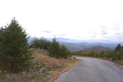 Sevierville Residential Lots & Land For Sale: Mountain Ash Way
