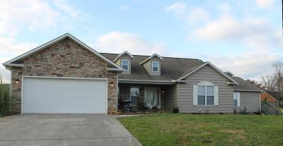Sevierville Single Family Home For Sale: 2504 Covington Circle