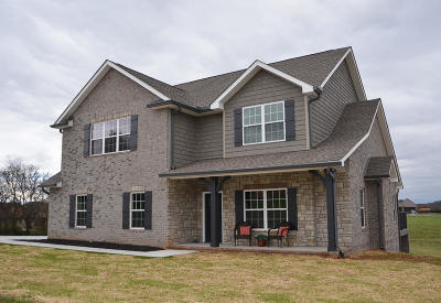 Sevierville Single Family Home For Sale: 1710 Cool Brook Court