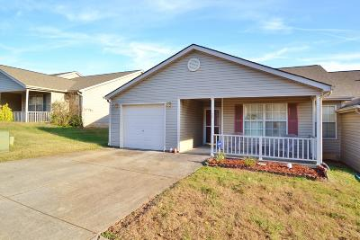 Knoxville Single Family Home For Sale: 1120 Silo Way