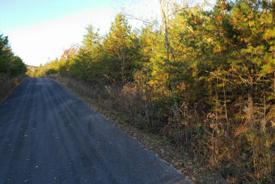 Residential Lots & Land Sold: Lot 107 Huff Overlook Way