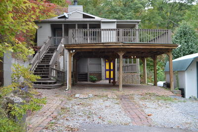 Sevierville Single Family Home For Sale: 995 Alpine Drive