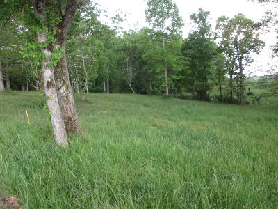 Anderson County Residential Lots & Land For Sale: Ridge Circle Rd #1, 2, 3