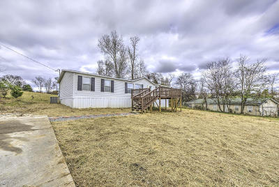 Hamblen County Single Family Home For Sale: 1830 Dover Rd