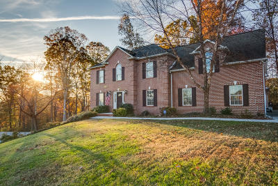 Knoxville Single Family Home For Sale: 7865 Scenic Oaks Rd