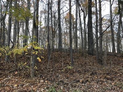 Campbell County Residential Lots & Land For Sale: Hiwassee View Dr Lot #110