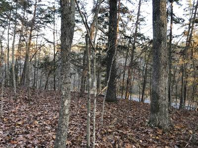 Campbell County Residential Lots & Land For Sale: Hiwassee View Dr Lot #111