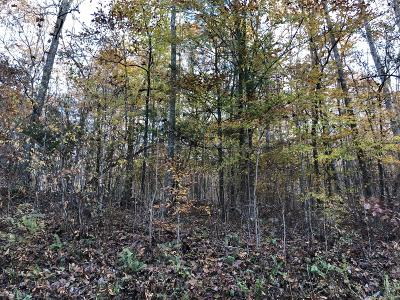 Residential Lots & Land For Sale: Hiwassee View Dr #101