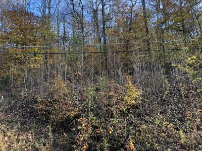 Residential Lots & Land For Sale: Hiwassee View Dr Lots 175, 176