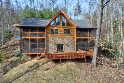 Sevierville Single Family Home For Sale: 4410 Whetstone Road