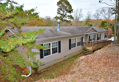Sevierville Single Family Home For Sale: 1020 Pleasure Rd