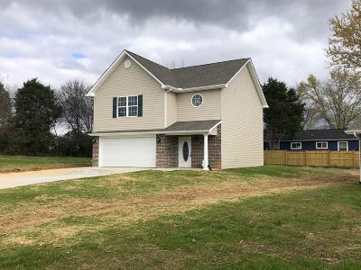 Blount County Single Family Home For Sale: 228 Rye Dr