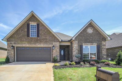 Blount County Single Family Home For Sale: 117 Medinah Circle