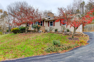 Knoxville Single Family Home For Sale: 2404 Belt Rd