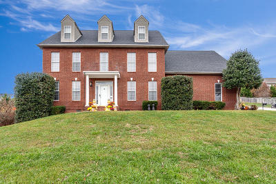 Knoxville Single Family Home For Sale: 1501 Willow Field Lane