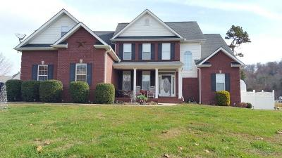 Lenoir City Single Family Home For Sale: 185 Old Farm Rd