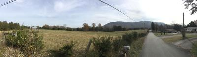 Corryton Residential Lots & Land For Sale: 8920 Bud Hawkings Rd