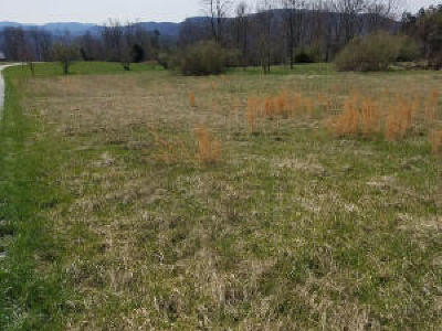 Campbell County Residential Lots & Land For Sale: Sassafras Lane
