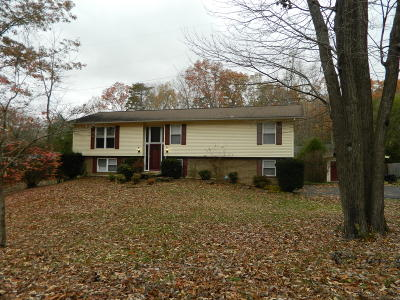 Anderson County Single Family Home For Sale: 12 Windhaven Lane