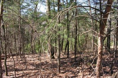 Sevierville Residential Lots & Land For Sale: Hazy Circle