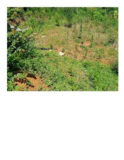 Gatlinburg Residential Lots & Land For Sale: 1008 Condo Drive