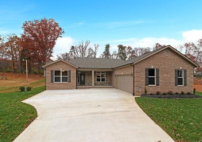 Lenoir City Single Family Home For Sale: 553 Winchester Drive