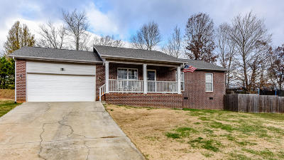 Maryville Single Family Home For Sale: 437 Asher Way