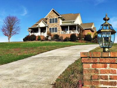 Dandridge Single Family Home For Sale: 104 Eagle Nest Lane