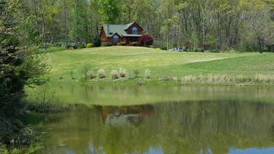 Loudon County Single Family Home For Sale: 1050 Blue Springs Rd