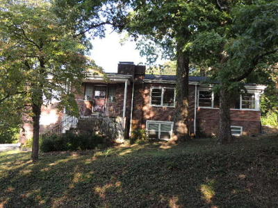 Knoxville Single Family Home For Sale: 109 Hale Rd