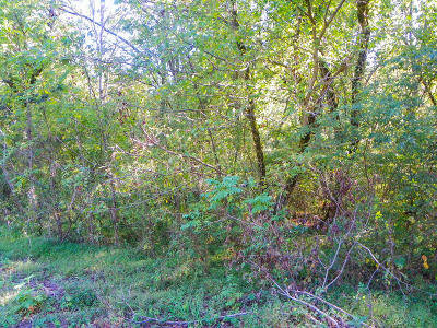 Sevierville Residential Lots & Land For Sale: Lot#4 Jones Cove Road