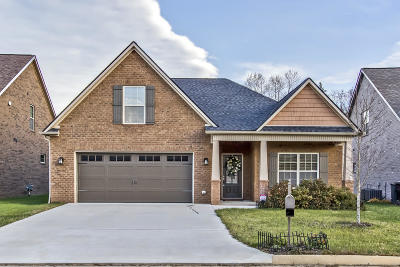 Knoxville Single Family Home For Sale: 3246 Beaver Glade Lane