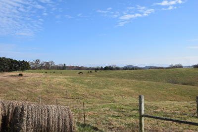 Residential Lots & Land For Sale: 1820 Ritchey Rd