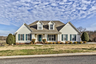 Lenoir City Single Family Home For Sale: 4050 Hirst Circle