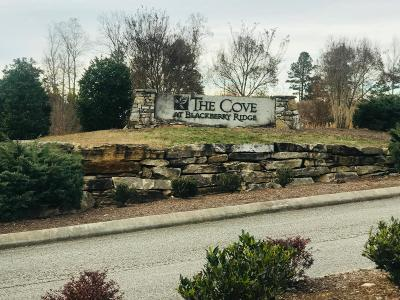 Loudon Residential Lots & Land For Sale: Lot 85 Twin Lakes Drive