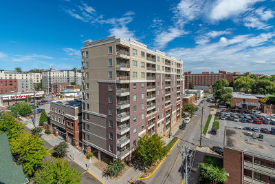 Knoxville Condo/Townhouse For Sale: 1735 Lake Ave #901